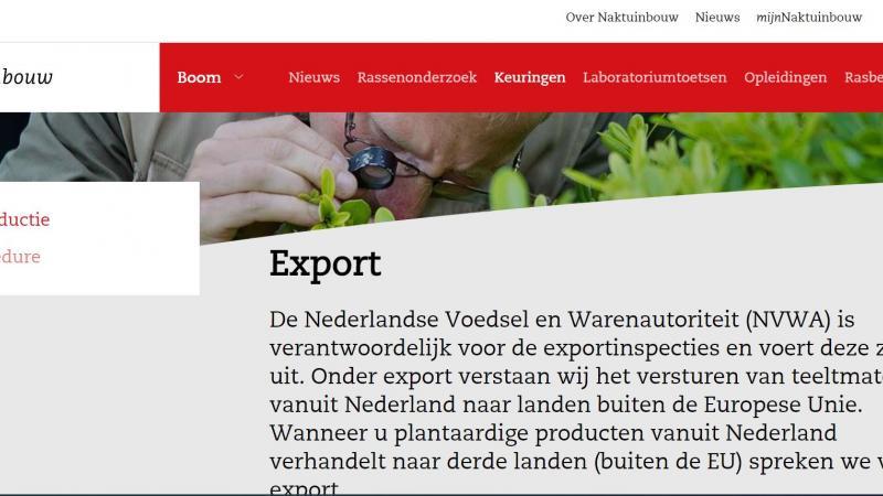Website Export